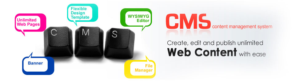CMS Web Development Services Ireland
