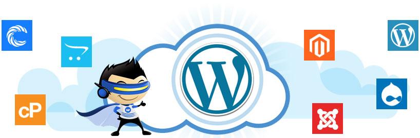 WordPress Development Company Ireland